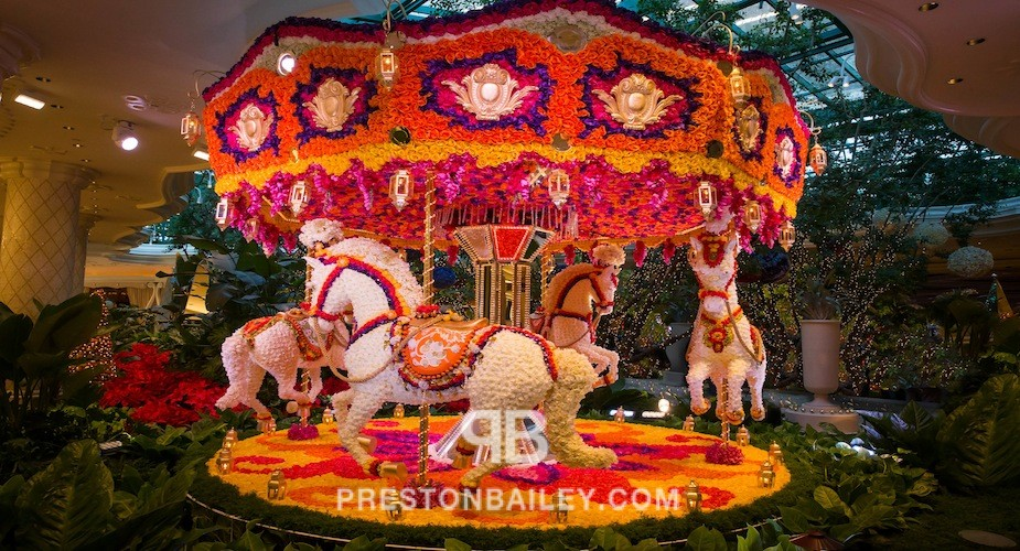 art installation carousel floral floral sculpture flowers horse indoor leaves plants color|coral color|cream color|green color|orange color|pink color|purple color|red color|violet color|white color|yellow